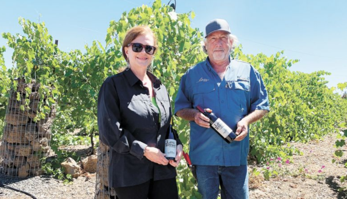 Bend Oregon Vineyard